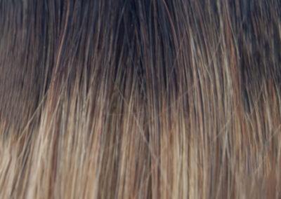colores-ginger-T3-9D-Californianas-Castaño-Oscuro-Avellana