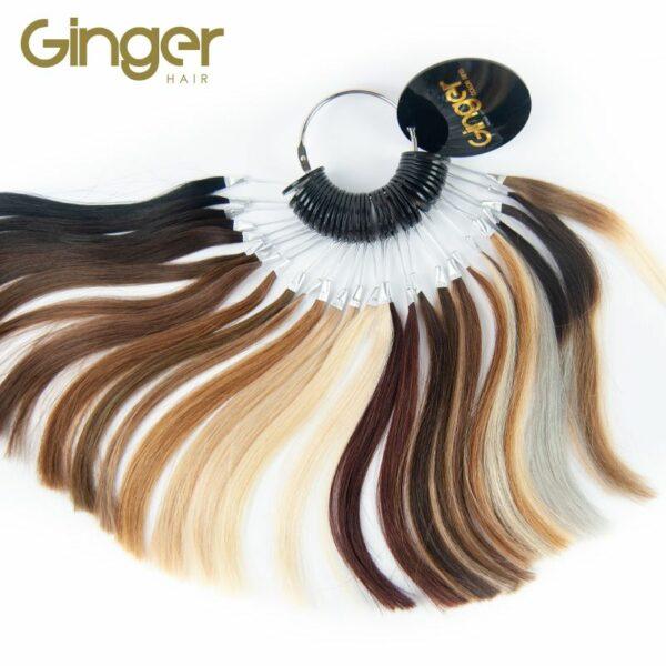 Muestrario de color de la marca Ginger
